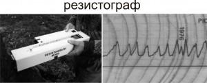 """Резистограф"" (Resistograph ®)"