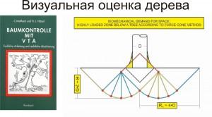 Визуальная оценка деревьев (VTA – Visual Tree Assessment)